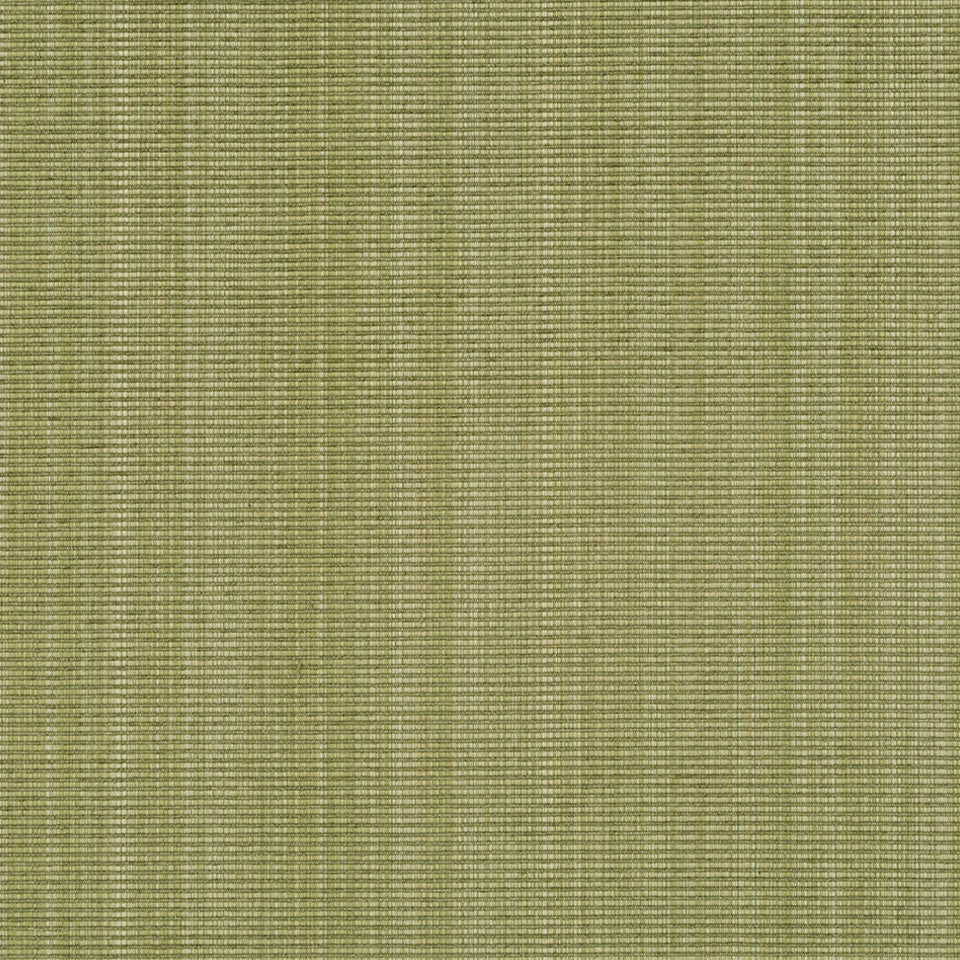 Ribbed Solid Fabric - Grass