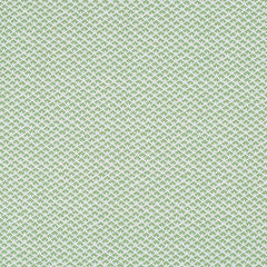 Madcap Cottage Gem Palace Fabric- Palm Green