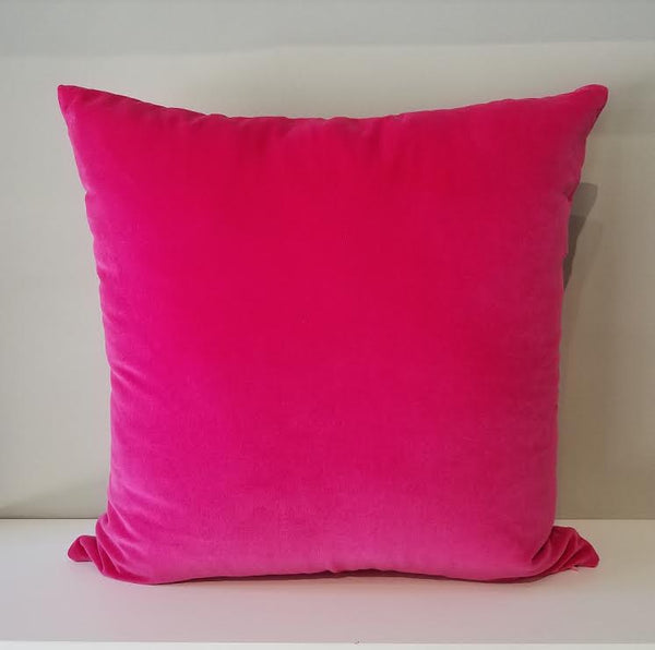 Pink Champagne Pillow 20""