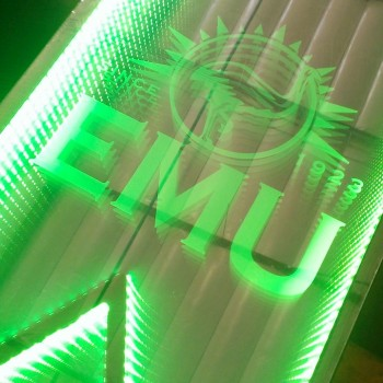 SWAN EMU LED Beer Pong Tables
