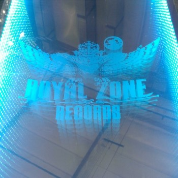 Royal Zones LED Beer Pong Tables