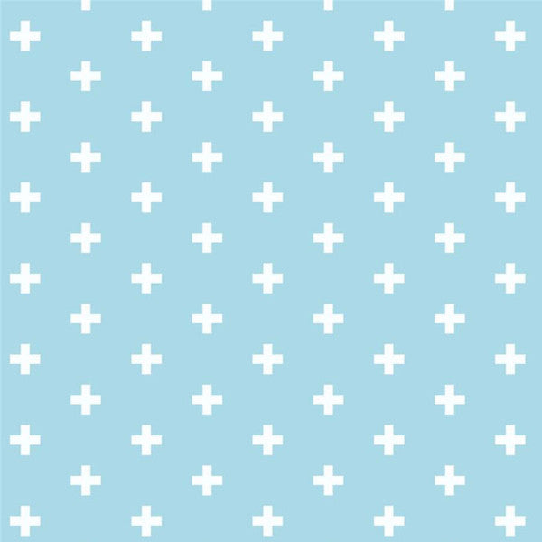 blue light and white swiss cross