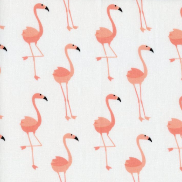 coral and white flamingo