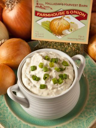 Farmhouse Five Onion dip