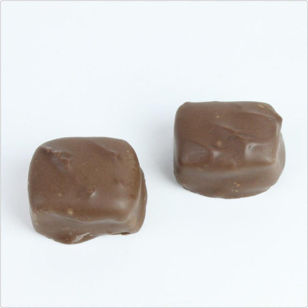 Sugar Free Milk Chocolate Caramels - CoCa LeNa Candy Shop Port Washington