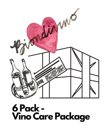 Biondivino 6 Pack Wine Care package