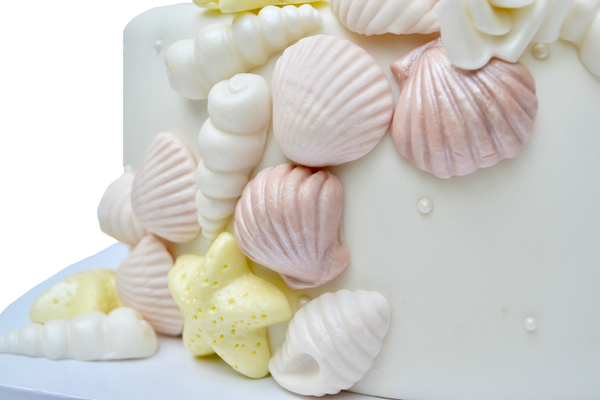 Seashell and white roses cake for a wedding, engagement or shower. Seashell fondant by Sugar Street Boutique Toronto