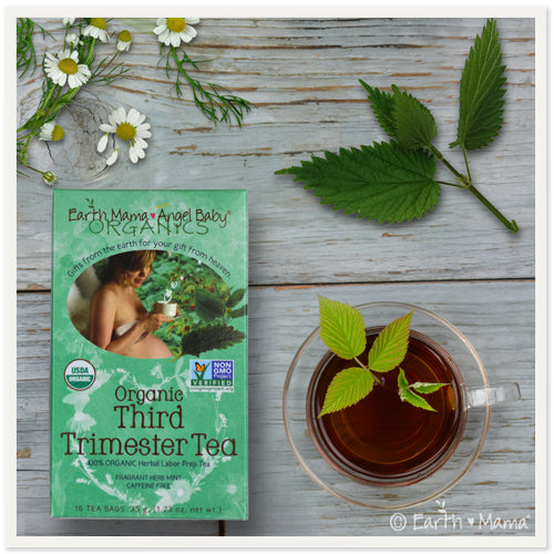 Earth Mama Angel Baby Organic Third Trimester Tea - Nature's Treat