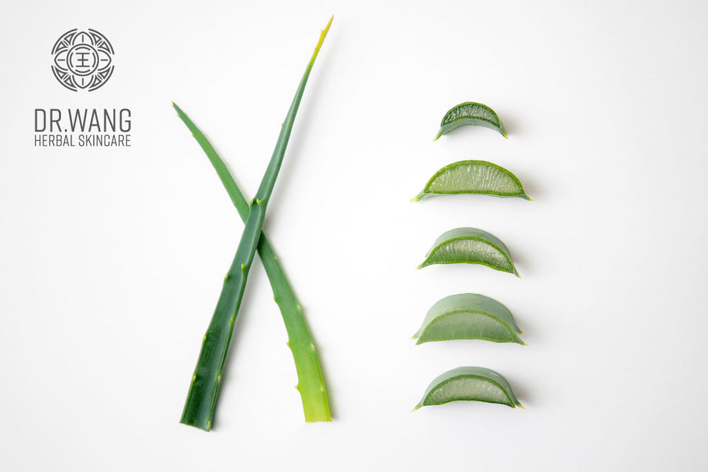Why Aloe is so Great for Sensitive Skin