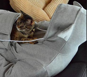 "Hoodies With Cuddle Kangaroo Pouch for Cats with Ears on Hood fun Sweatshirt ""FREE SHIPPING"""