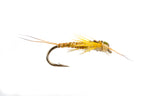 Edward's Stonefly Yellow