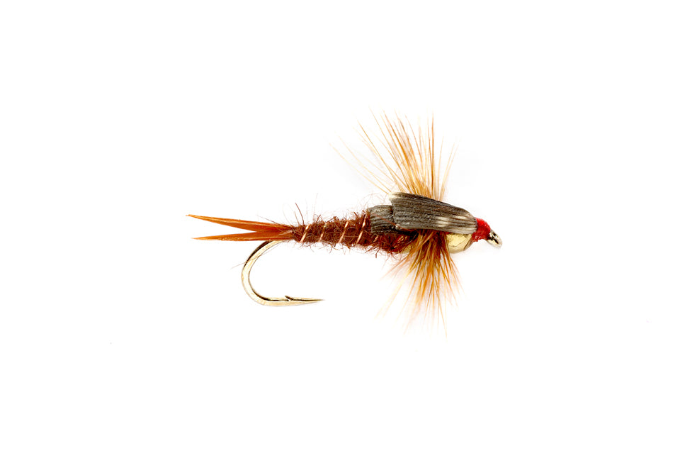 Stonefly Nymph Brown - Tungsten Beadhead