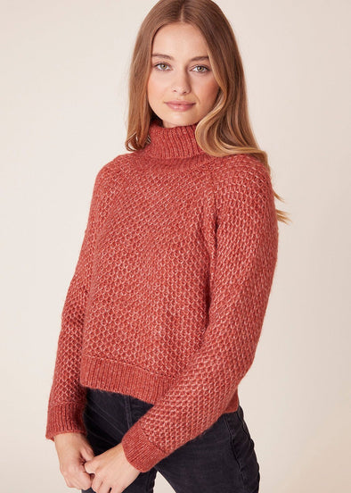 Big Easy Turtleneck Sweater - Brick House