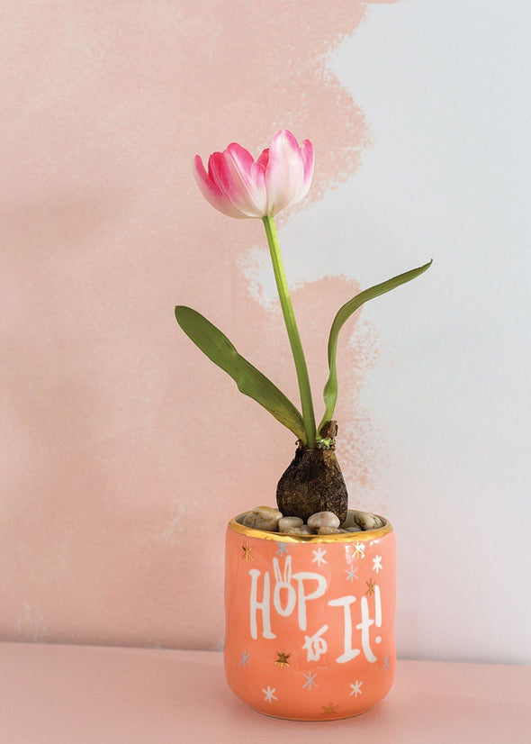 Hop To It Spring Pot
