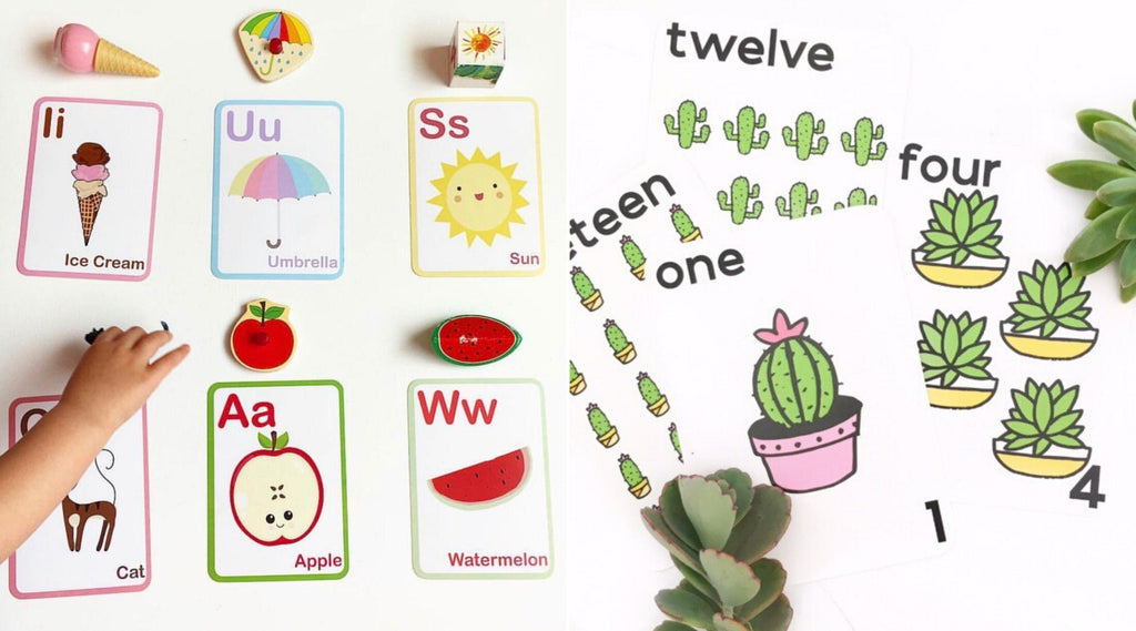 Educational Flash Cards
