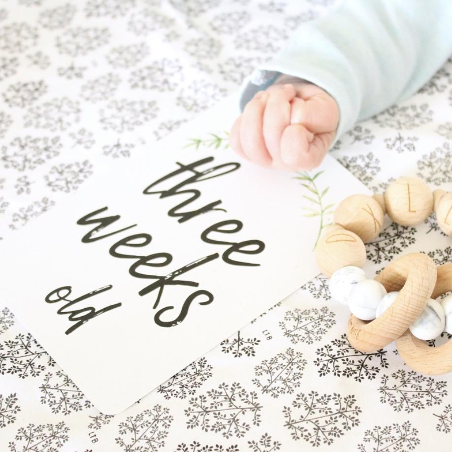 Baby Milestone Cards - Fern Design