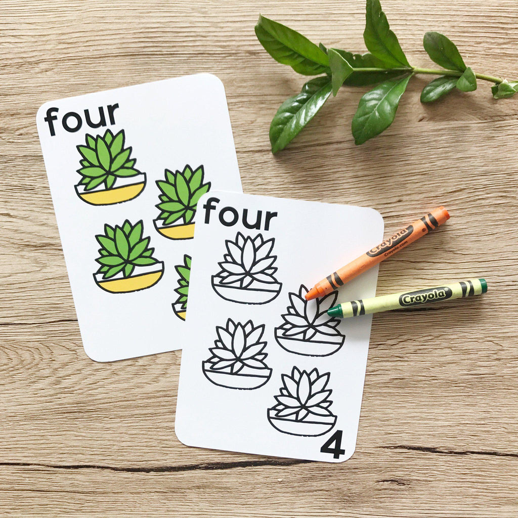 Number Flash Cards - Learn to Count-Vanda Baby