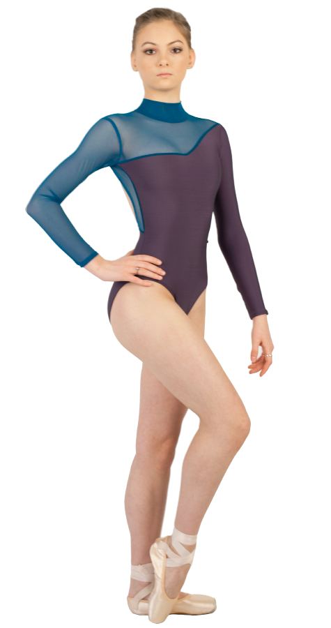 Custom Ballet Leotard in WINK Style Front View