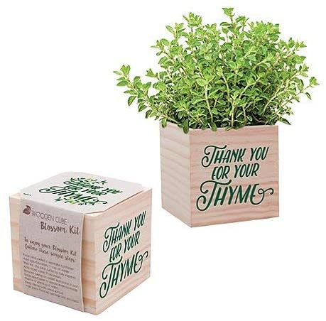 thyme, wooden cube planter, herbs, desk planter, thank you for your thyme