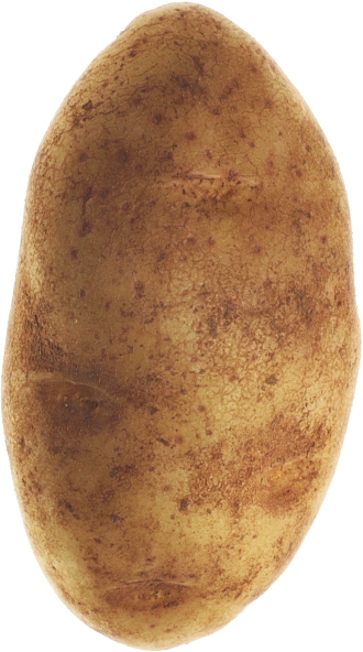 Potato Pal – The Best Gift Ever :)