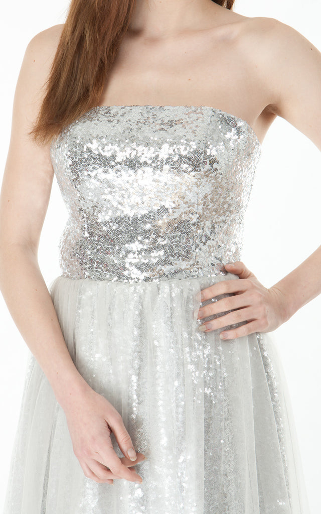 Strapless Sequinned Dress- silver