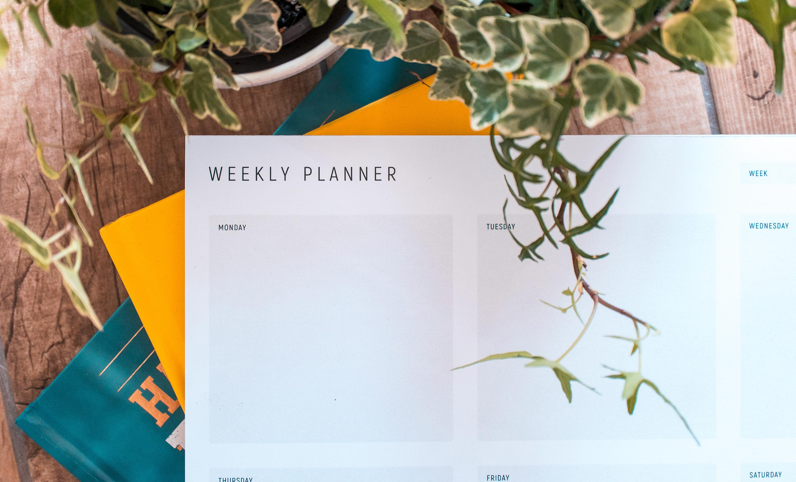 Planning your week just got easier