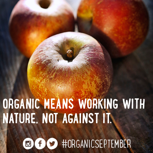 Organic apples - Organic September