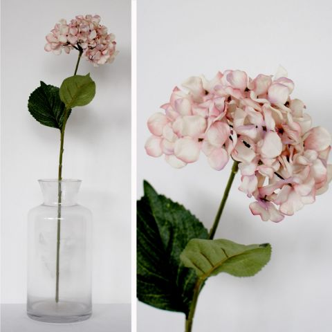 Hydrangea Faded Pink Stem - Applemoon Interiors