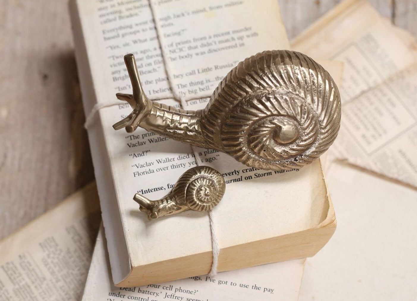 SNAIL PAPER WEIGHT - Applemoon Interiors