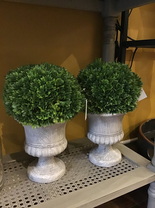 Topiary Urn - Applemoon Interiors