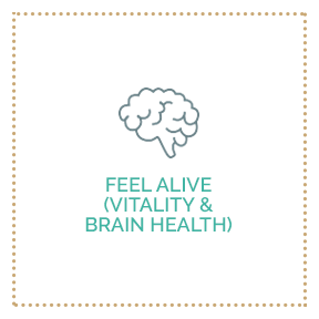 Feel Alive (Vitality & Brain Health)