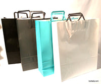 Large Paper Bags with handle - add on SOLD EACH