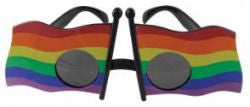 Rainbow Flag Sun Glasses