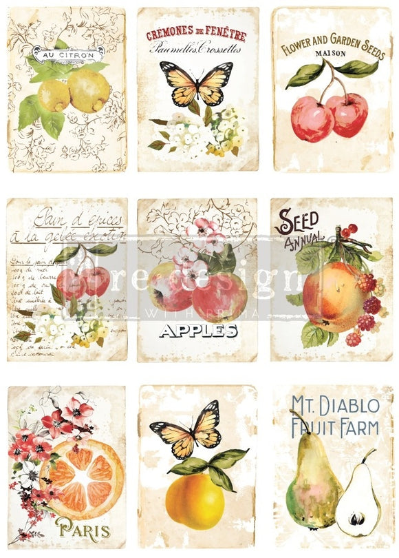 Redesign - Decor Transfer - Sweet Apricot
