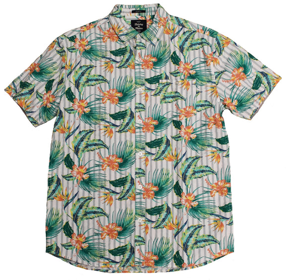 Iguana SS Button-down