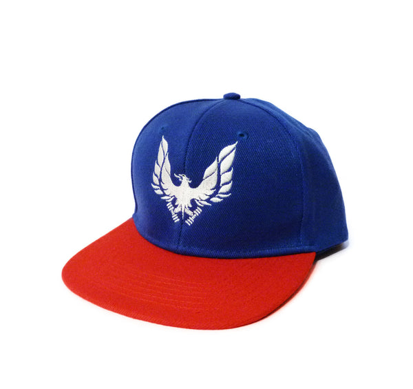 INDEPEDANCE DAY SNAPBACK CAP HAT