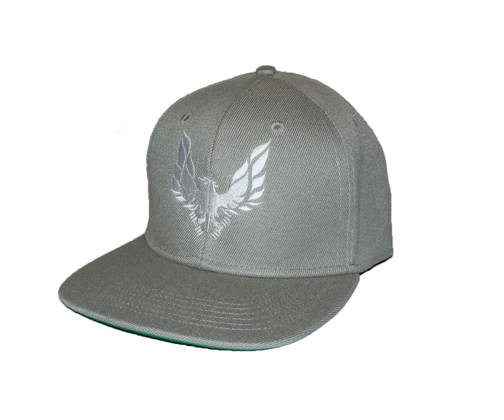 grey snap back cap