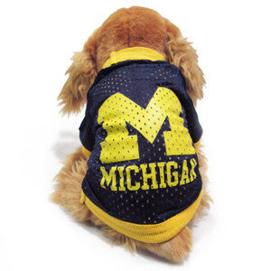 UM Mesh Dog Jersey - Navy/Maize
