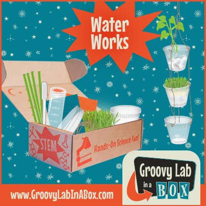 Groovy Lab Water Works