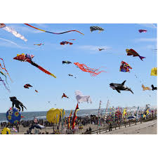 High Flying Kites 500 piece puzzle