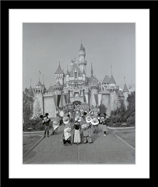 Disneyland Sleeping Beauty Castle & Characters