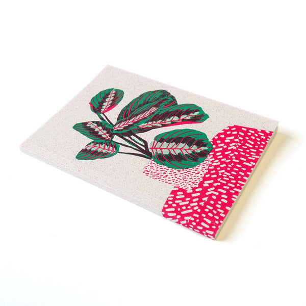 Prayer Plant Note Book by Christine te Bogt