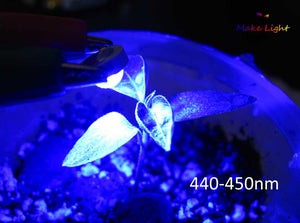 3W Grow Light LED: 440-450nm