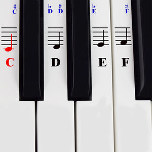 Transparent 49 54 61 76 88 keys digital piano stickers electronic keyboard stave note white keys music decal label