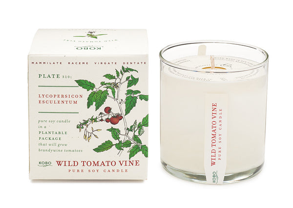 Wild Tomato Vine Pure Soy Candle ~ Plant the Box