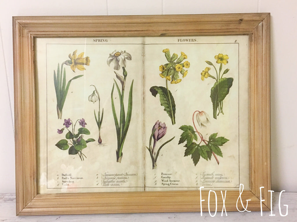 Framed Four Seasons Page Prints ~ 4 Styles