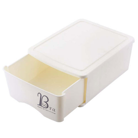 Storage Box Plastic Storage Box  Underwear Storage Box Drawer