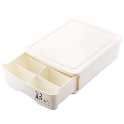 Storage Box Drawer Divider Storage Box Underwear Organizer