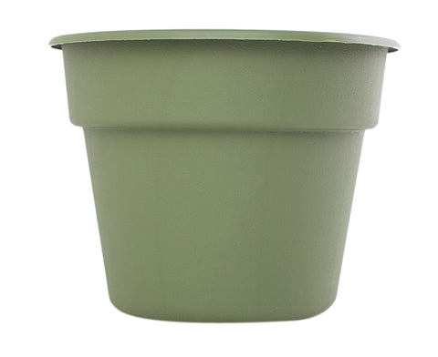 Bloem 12Inch Dura Cotta Planter Living Green
