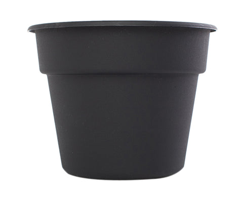 Bloem 8Inch Dura Cotta Planter Black